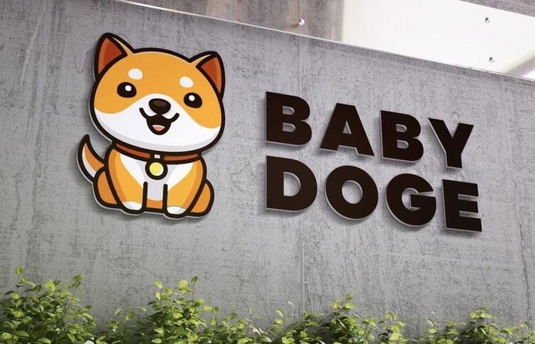 Baby Dogecoin Price Chart Prediction